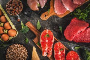 protein, nutrition